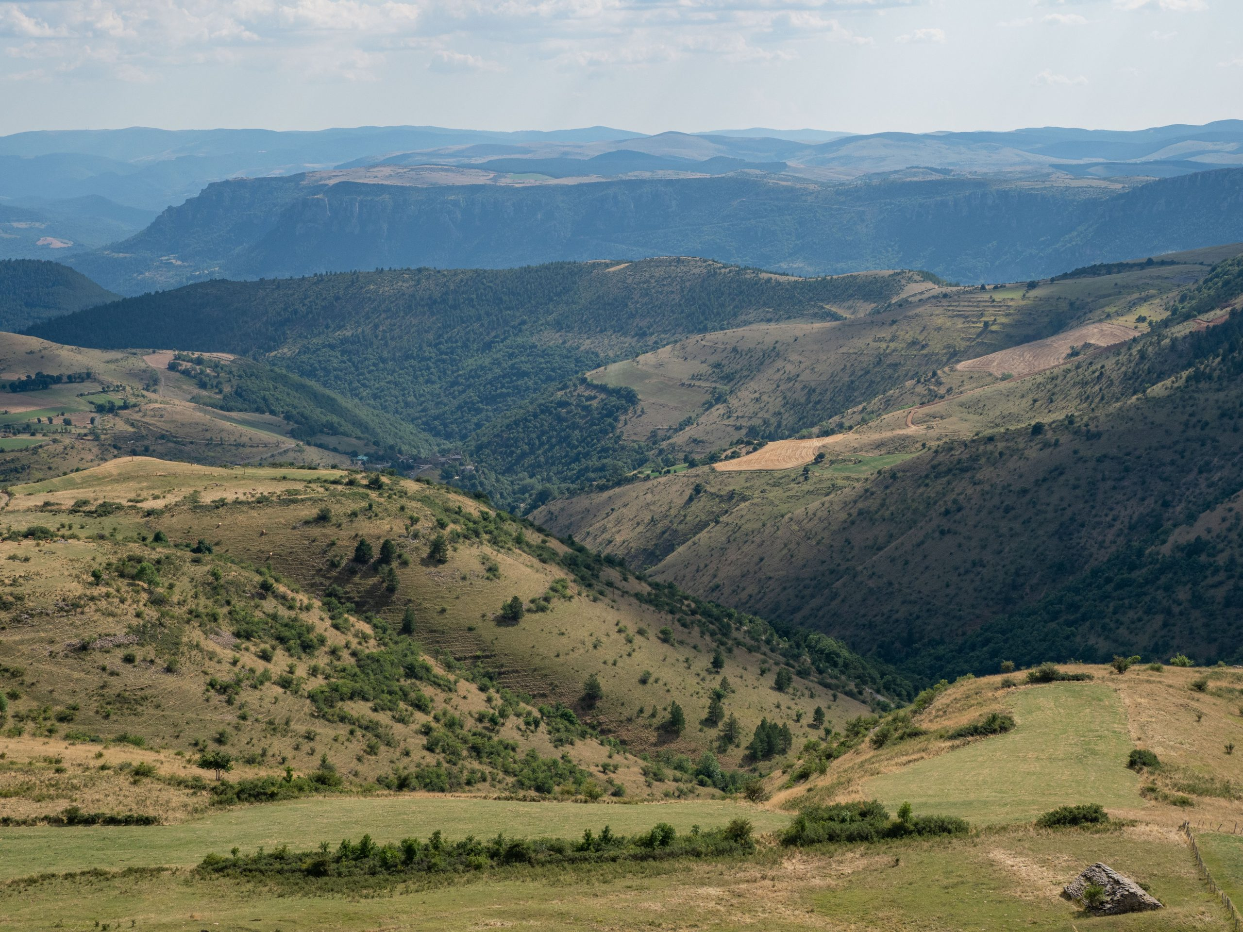 Tarn Gorge -  Cévennes